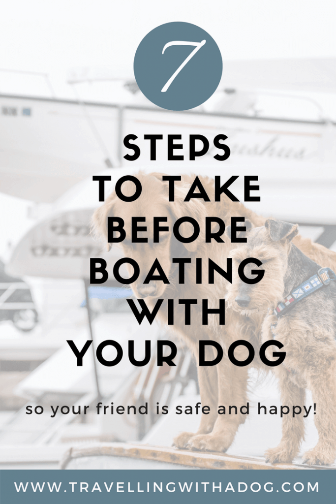 image with text overlay: 7 steps to take before boating with your dog