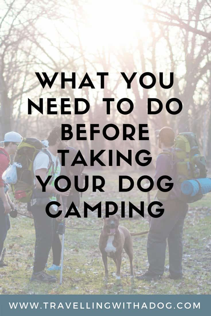 image with text overlay: what you need to do before taking your dog camping