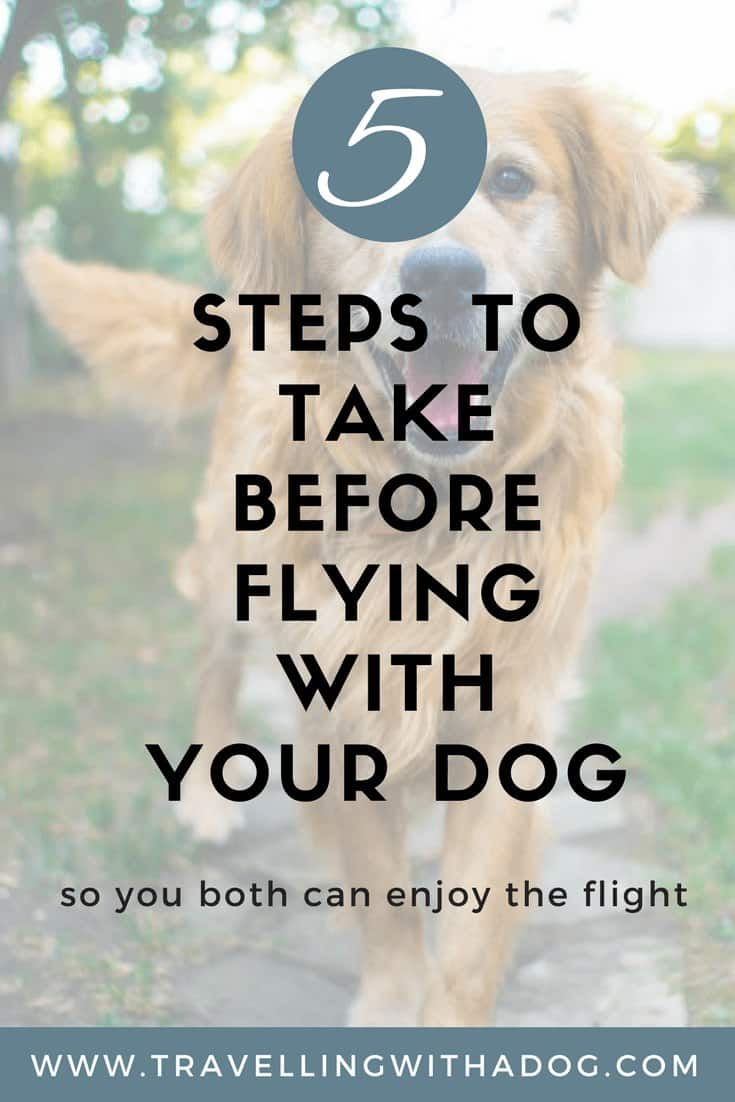 image with text overlay: 5 steps to take before flying with your dog