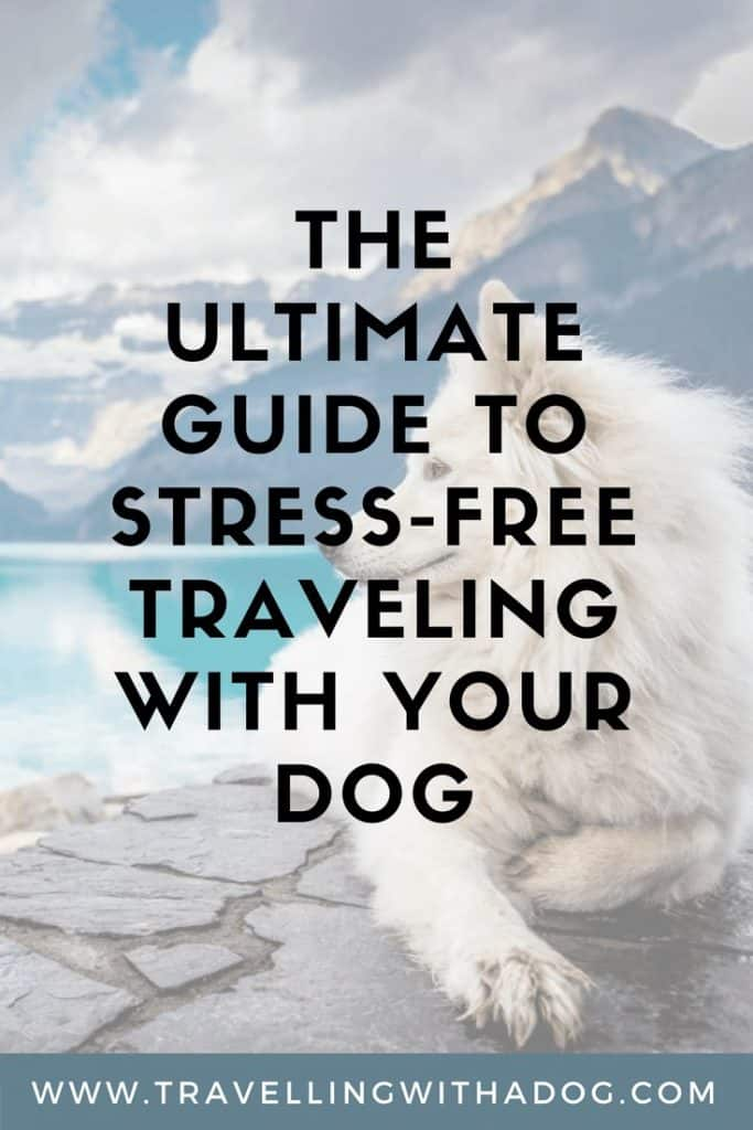 image with text overlay: the ultimate guide to stress-free travelling with your dog
