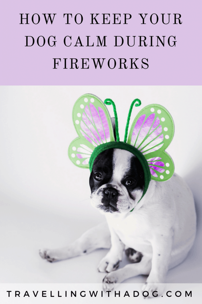 image with text overlay: how to keep your dog calm during fireworks