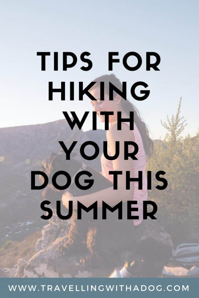 image with text overlay: tips for hiking with your dog this summer