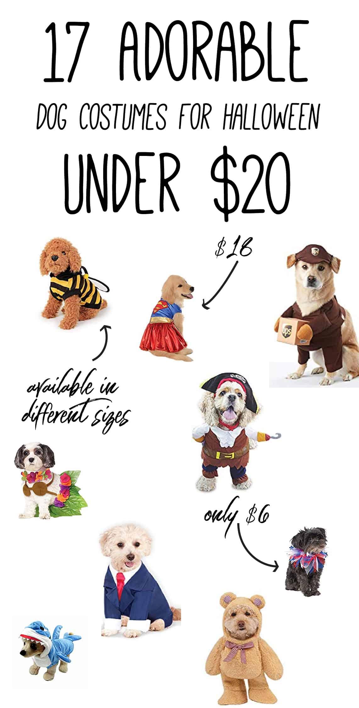 Dog halloween costume infographic