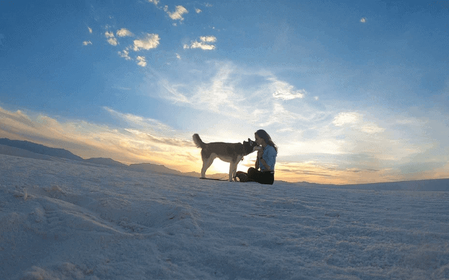 A dog and girl at white sands national monument
