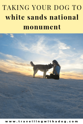 image with text overlay: taking your dog to white sands national monument
