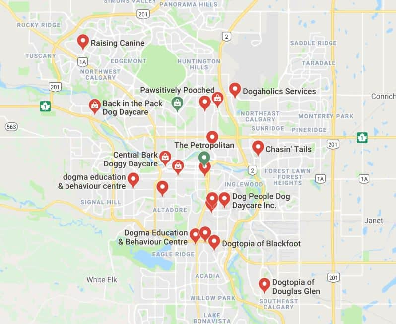 A google map showing dog day cares in Calgary
