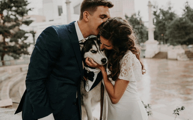 Couple getting married and kissing their dog