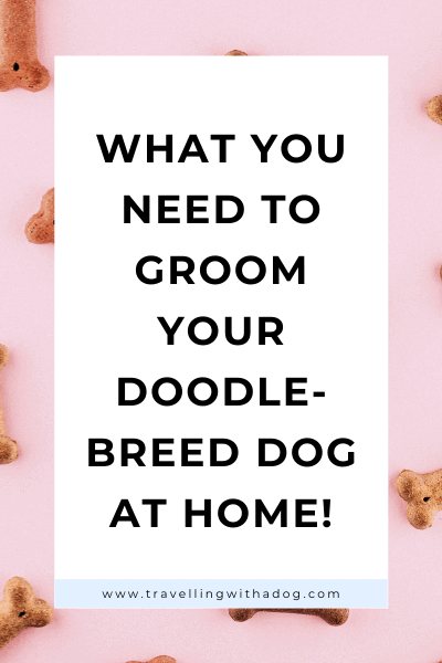 image with text overlay: what you need to groom your doodle dog breed at home