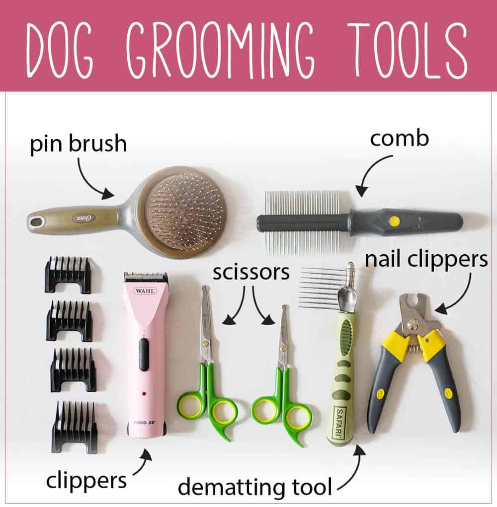 An assortment of dog grooming tools on a white sheet