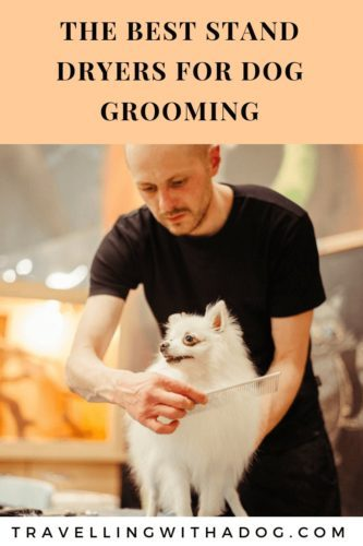 image with text: the best stand dryers for dog grooming