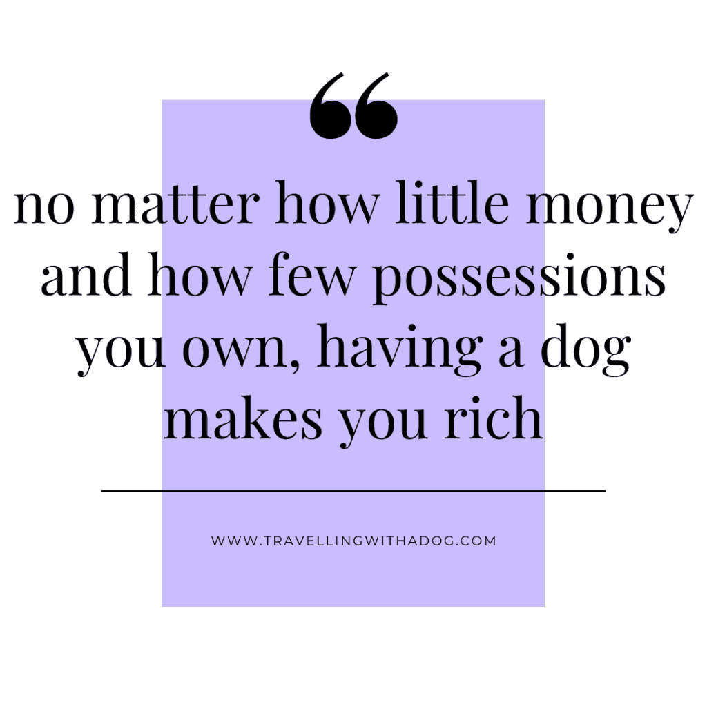quote: no matter how little money and how few possessions you own, having a dog makes you rich