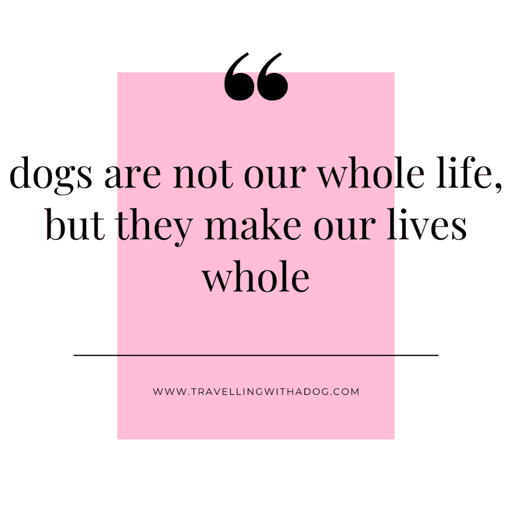 quote: dogs are not our whole life, but they make our lives whole