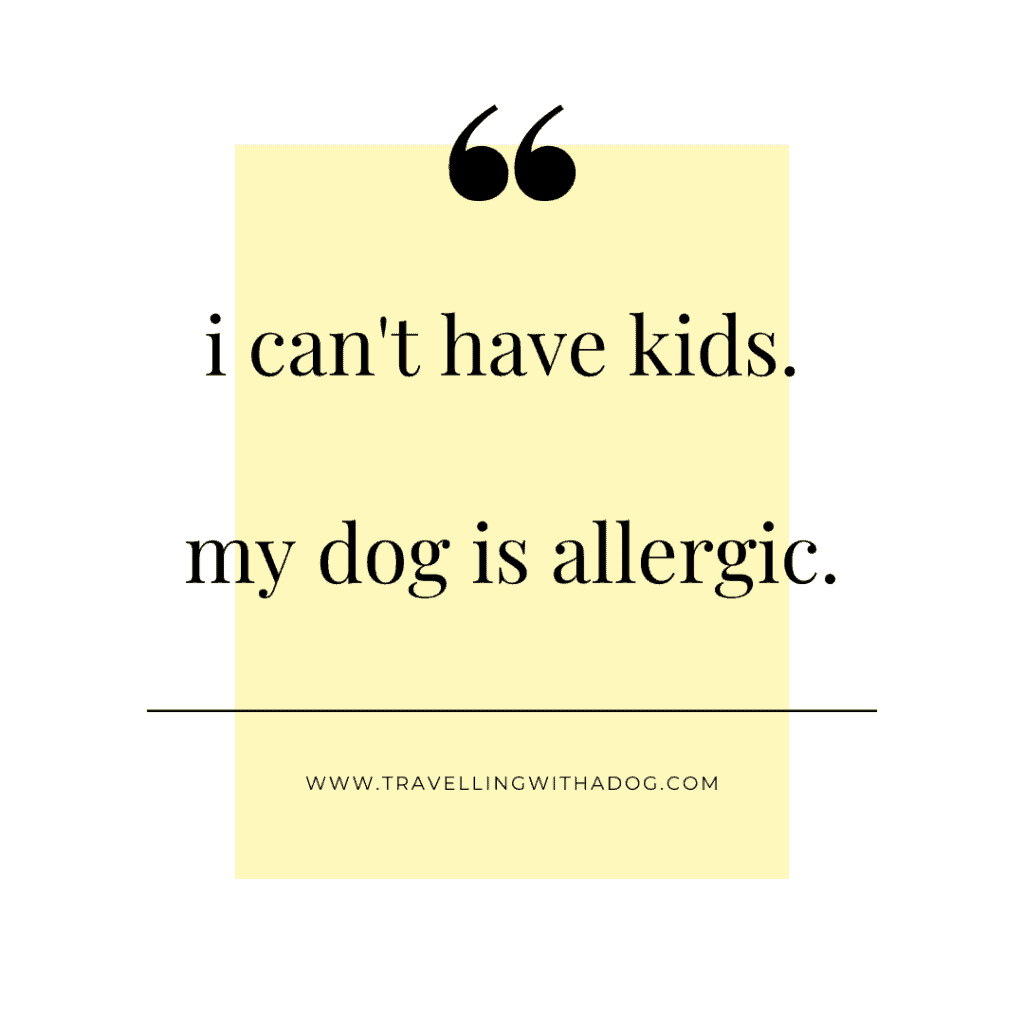 quote: i can't have kids. my dog is allergic