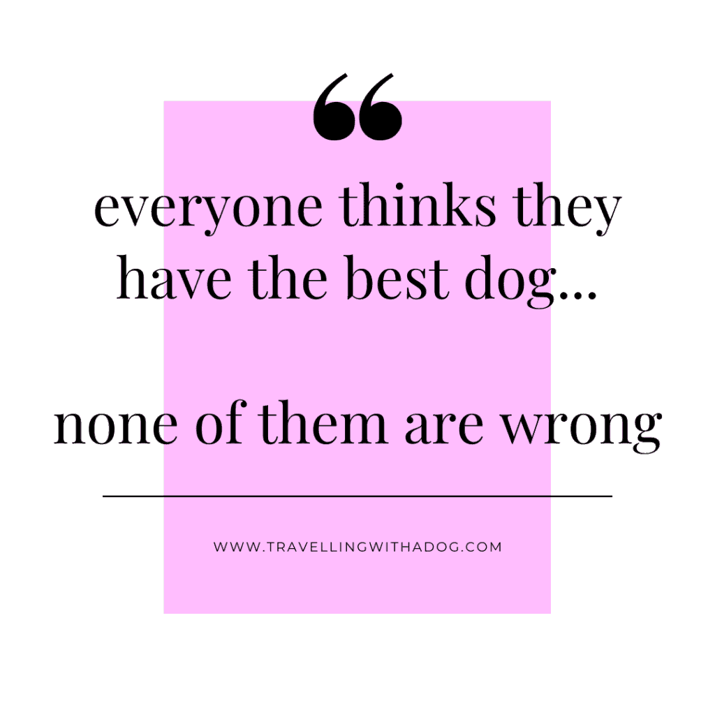 quote: everyone thinks they have the best dog...none of them are wrong