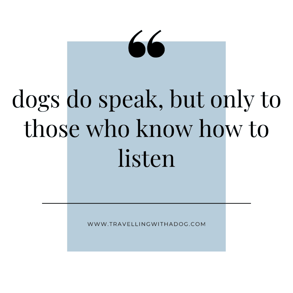 Image with text overlay that says: dogs do speak, but only to those who know how to listen