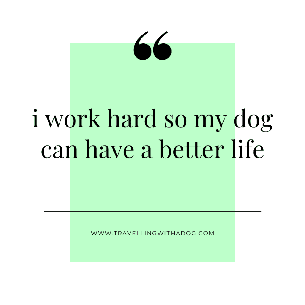 quote: i work hard so my dog can have a better life