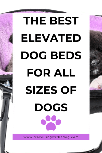 image with text overlay: the best elevated dog bed for all sizes of dogs