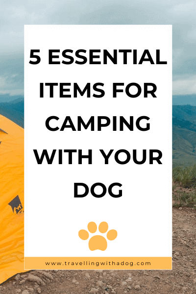 Image with text overlay: 5 essential items for camping with your dog