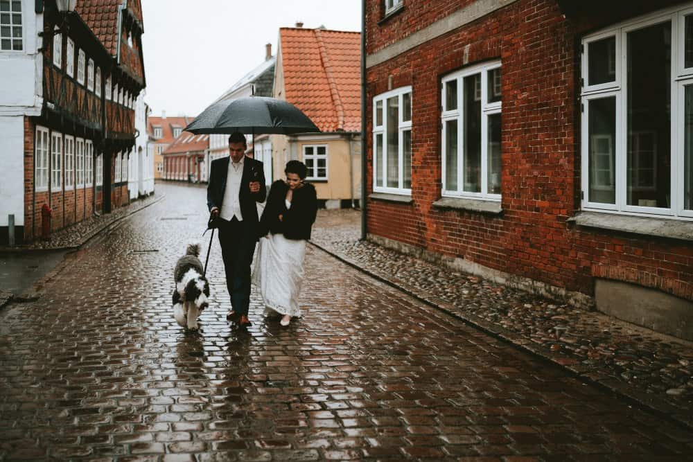 Bride, groom and dog walking in an old European town