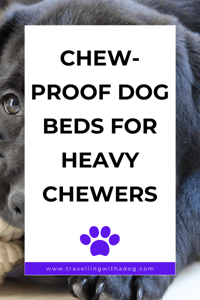 image with text overlay: chew-proof dog beds for heavy chewers