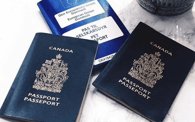 Picture of three blue passports on a marble table